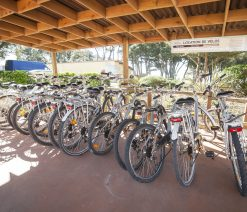 Location de vélos Camping Pornic